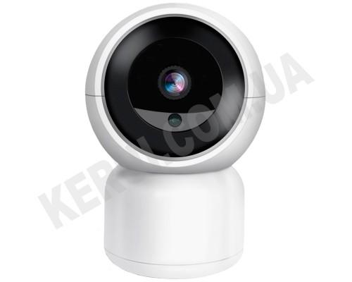 IP Камера: TV-308ZD